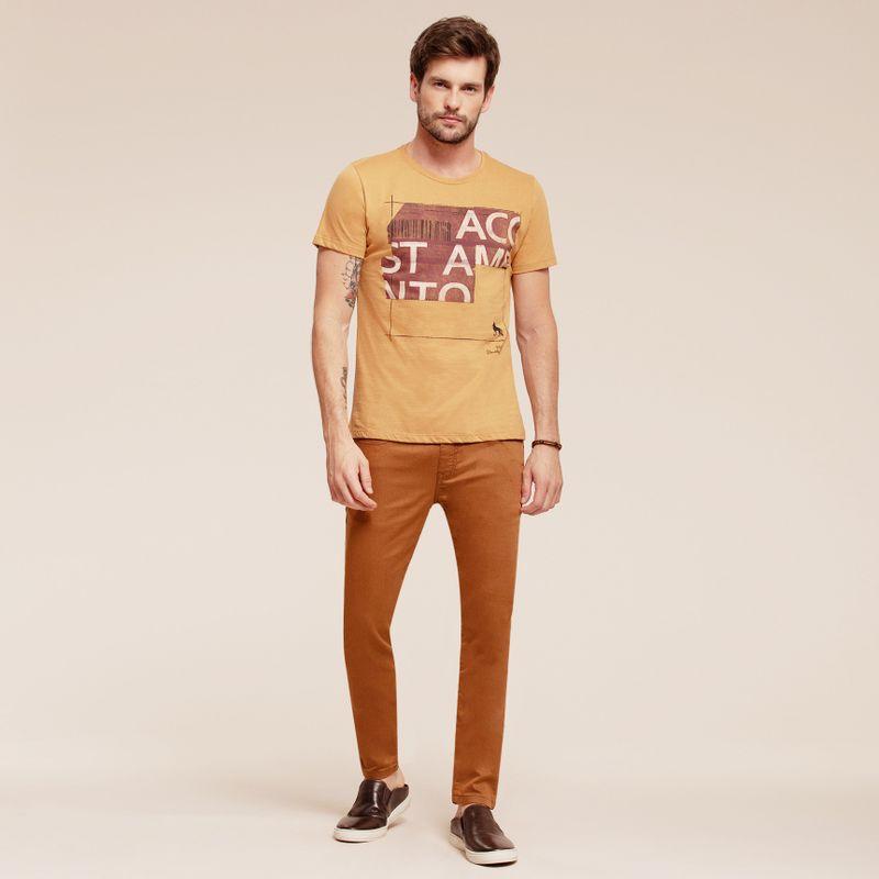 Camiseta manga curta estampa Lettering 87102031-1641_2